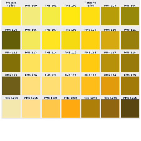 Custom Pins Color Chart Pantone Matching System